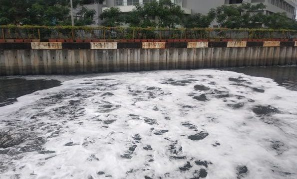 Taman Bambu Air Pengolah Phospat Air Limbah Laundry