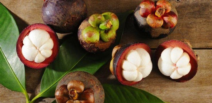Antioksidan dari Ekstrak Kulit Buah Manggis Perbaiki HbA1c dan Glukosa Darah