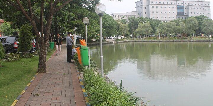 Keanekaragaman Basidiomycetes Kampus C UNAIR untuk Bangun Eco-campus